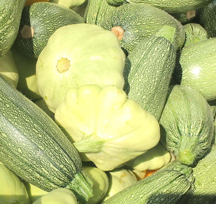 Patty Pan Squash - Green