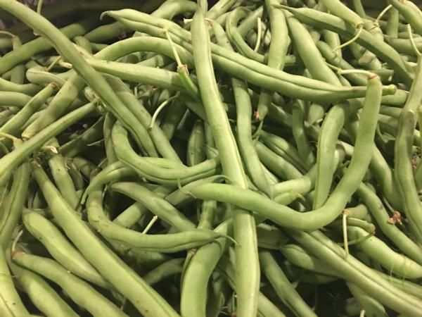 Green Beans - Organically Grown (lbs.)