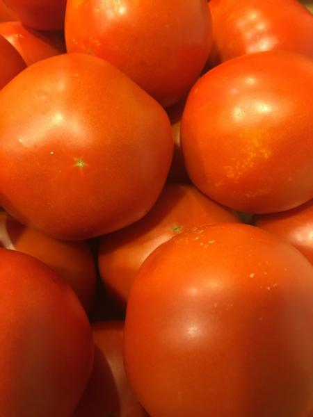 Red Tomatoes - Organically Grown (2 lbs.)